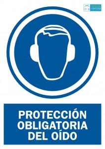 Obligacion proteccion auditiva