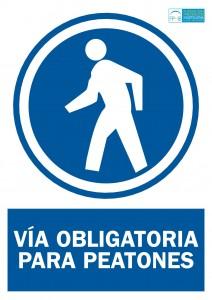 Obligacion proteccion peatones
